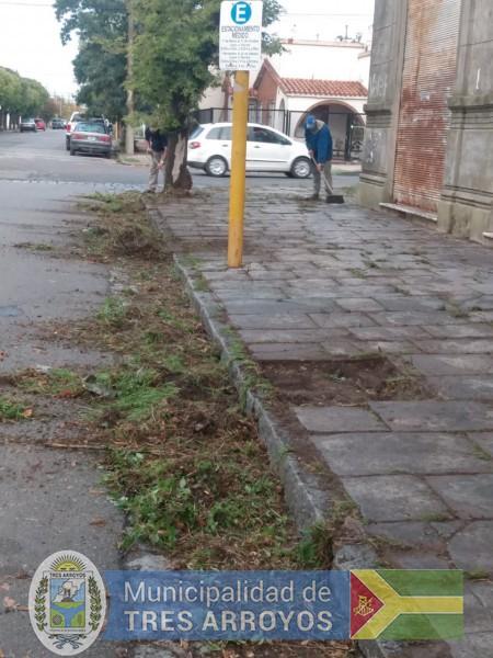 imagen 1 de la noticia EL MUNICIPIO LIMPIA VEREDAS DEL EX ABCpublicada el 2021-04-09
