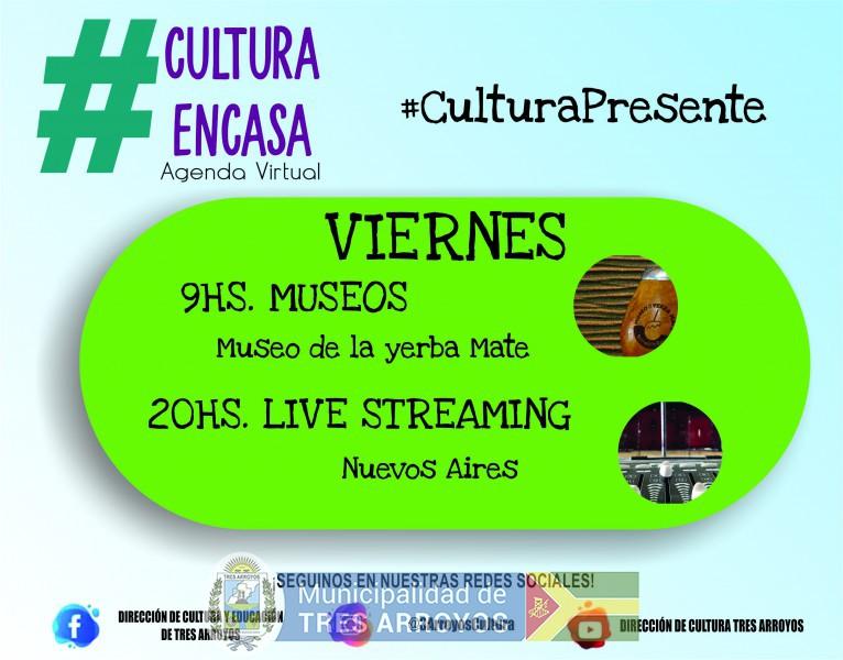 imagen 1 de la noticia Agenda cultural virtual: viernes 20/11publicada el 2020-11-19