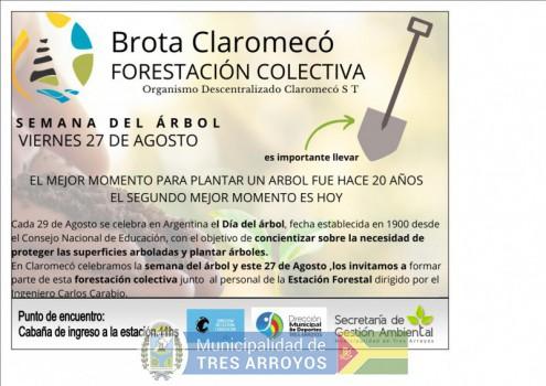 imagen 1 de la noticia JORNADA DE FORESTACIÓN COLECTIVA EN CLAROMECOpublicada el 2021-08-23