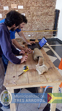 imagen 1 de la noticia Cientificos realizan identificacion de piezas paleontológicas en el Mulazzipublicada el 2018-10-26