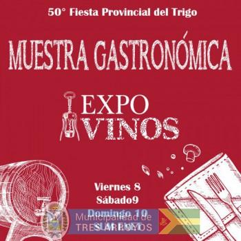 imagen 1 de la noticia 50° Fiesta Provincial del Trigo - Muestra gastronómica y expo vinospublicada el 2019-02-20